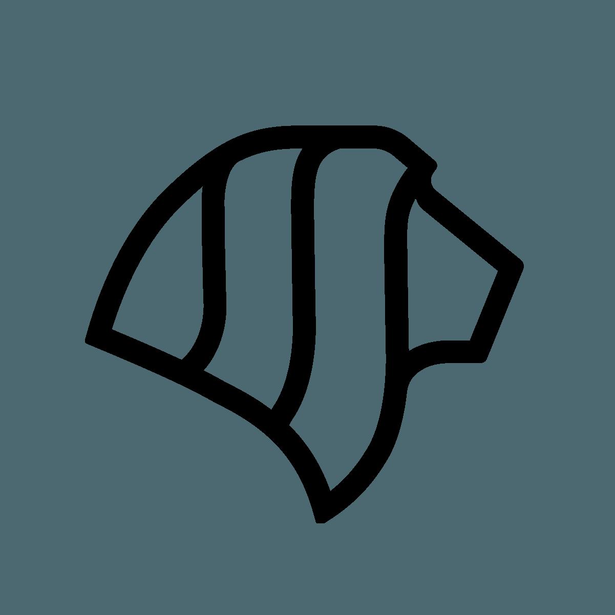 LionSher